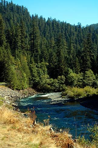 Clackamas River winds through Mt. Hood National Forest